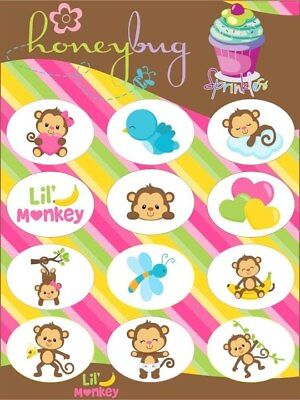 Honeybug MAGNETIC reborn doll PACIFIER It/'s a GIRL SPRINKLES sheet 12 decals