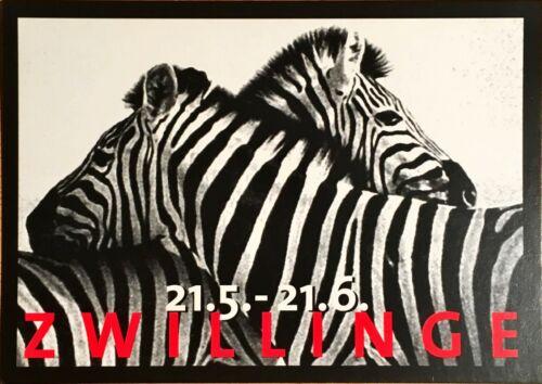 # 2.277 20 Juni Zebra- Edgarkarte Edgarcard Sternzeichen Zwillinge: 21 Mai