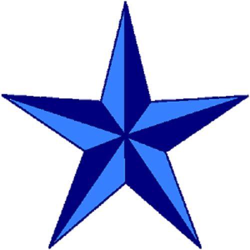 30 Custom Blue Star Personalized Address Labels