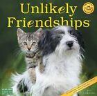 Unlikely Friendships Wall Calendar 2017 by Workman Publishing 9780761188452