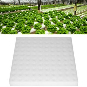 100pcs-Hydroponic-Sponge-Planting-Gardening-Tool-Seedling-Sponges-for-Greenhouse