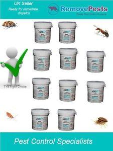 10 x Bedbug bombs killer fogger expert pest poison bed bug treatment AP