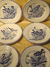 Série de 6 assiettes plates Clairefontaine Sanejouand J. oiseau Eté D.22cm