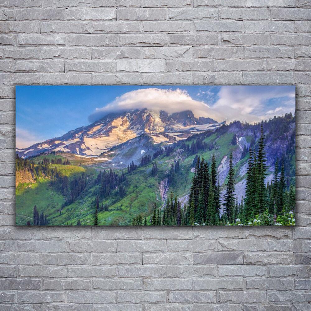 Impression sur verre Wall Art 120x60 Photo Image Forêt De Montagne Paysage