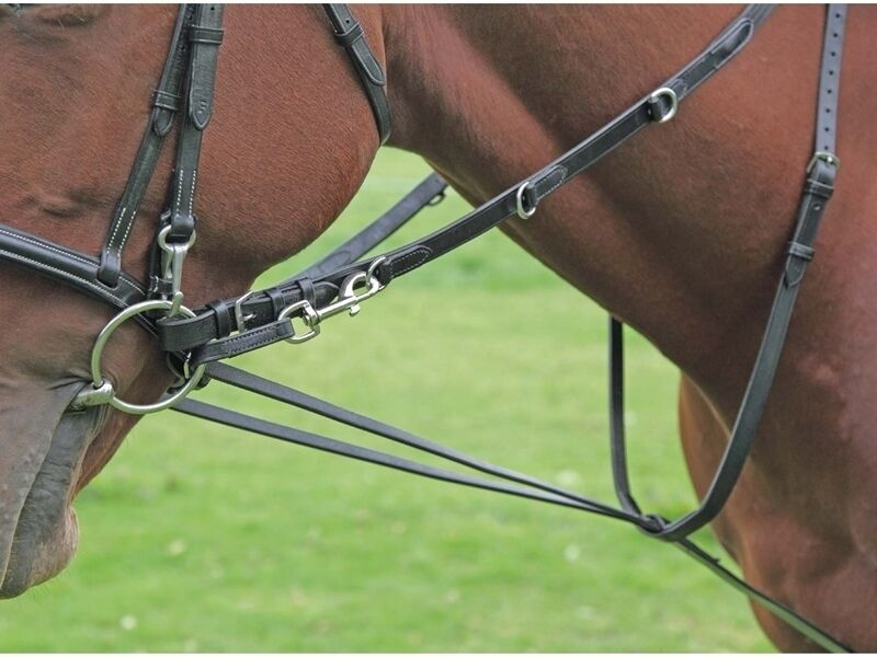 Shires Market Harbgoldugh Training Aid with Continental Reins - BNWT