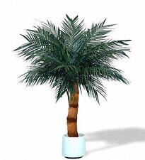 ARECA Palme 160-200cm -direkt vom Hersteller- Kunstpalme,Kunstpflanze,Dekopalme