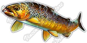 "Brown Trout Fly Fish Fishing Wildlife Ocean Car Bumper Vinyl Sticker Decal 6/""X3/"""