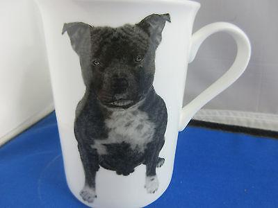 Dog Origins Breed Staffordshire Bull Terrier Fine bone china mug