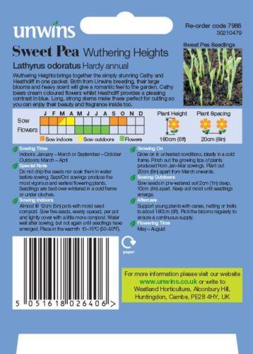 Unwins pacchetto pittorico-Fiore-pisello odoroso WUTHERING HEIGHTS 21 semi