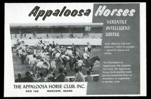 Details about 1959 Appaloosa Horse Club Moscow Idaho event photo vintage  print ad