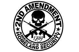 2ND AMENDMENT GUN vinyl decal sticker Truck Diesel car hunting funny PAIR OF 2