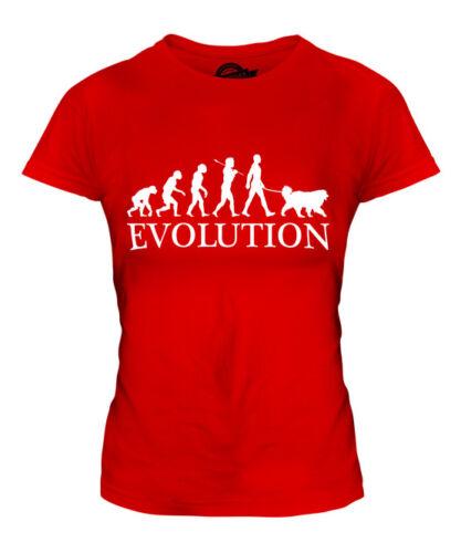 TIBETAN MASTIFF EVOLUTION OF MAN LADIES T-SHIRT TEE TOP DOG LOVER GIFT WALKER