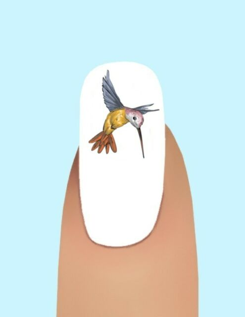 24 Hummingbird Waterslide Nail Art Decals 337 Ebay