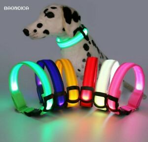 USB Rechargeable Pet Dog LED Collar Night Safety Flashing Glow In The Dark Ca...