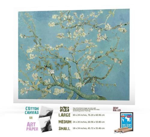 Print Van Gogh Post Impressionism Almond Blossom