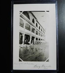 Rare View LONG BEACH CA California Rppc Real Photo Postcard PIER AUDITORIUM Gull