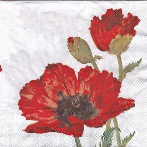 English Flower Paper Napkins Red Poppy Ideal Home Range Ihr Ebay
