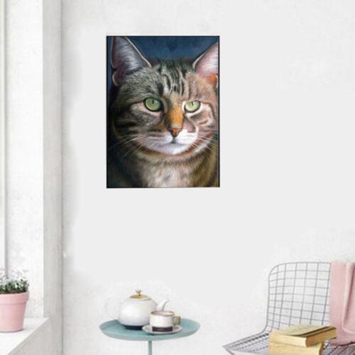 DIY 5D Puzzle Diamond Art Cross Stitich Fat Cat Face Animal Craft Home Decor