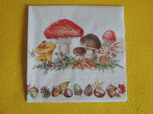 5  Servietten Mushrooms Pilze viele HERBST 1//4 Serviettentechnik Kastanien Eiche