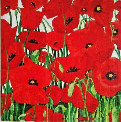 Wild poppies 10 servilletas amapola adormidera Poppy serviettentechnik 1//4 motivo