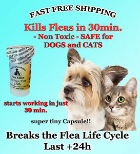 50-CAPSULES-Flea-Killer-For-CATS-and-DOGS-2-30-Lbs-15-Mg-FAST-Quick-Results-NEW