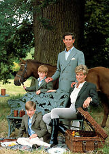 Photograph Prince Charles Princess Diana Harry and William Grainy Photo