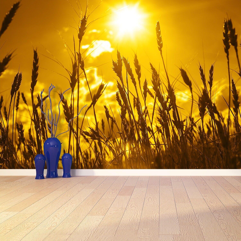 Fototapete Selbstklebend Einfach ablösbar Mehrfach klebbar Weizenfeld