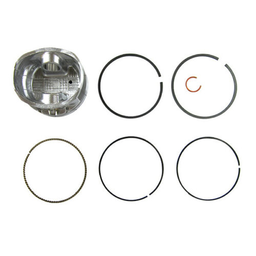 Briggs and Stratton 793647 Piston Kit