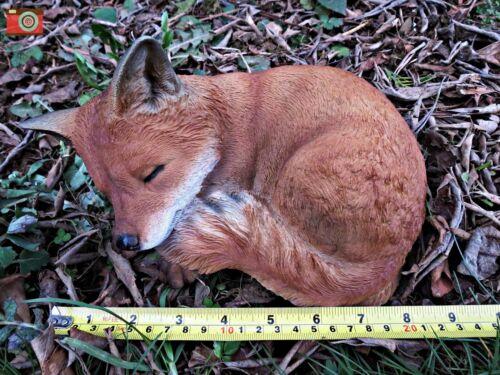 STUNNING ULTRA REALISTIC INDOOR OR OUT A SLEEPING FOX CUB VIVID ARTS