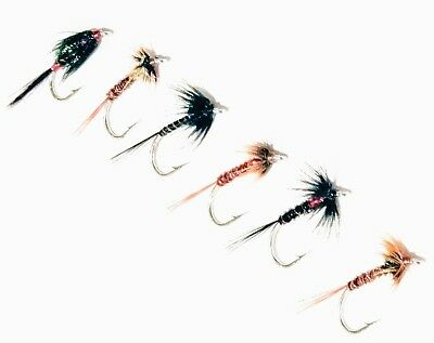 8 Pack of Orange Cruncher Trout Fly Mixed 10//12 Fishing Flies Fly Fishing