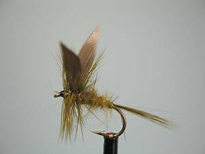 3 6 or 12x Rough Olive Dry Trout Flies for Fly Fishing