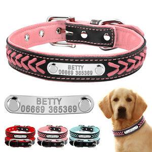 personalised dog collar custom soft padded pet collars name id tag