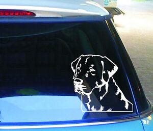cartattoo4you-ak-01450-Labrador-Retriever-Head-No1-Sticker-dog-dog