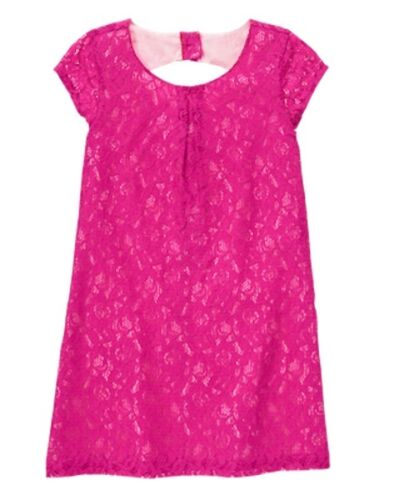 NWT Gymboree Family Brunch Lace Shift dress 4,5 6,7,8,10,12 Wedding Easter Girl