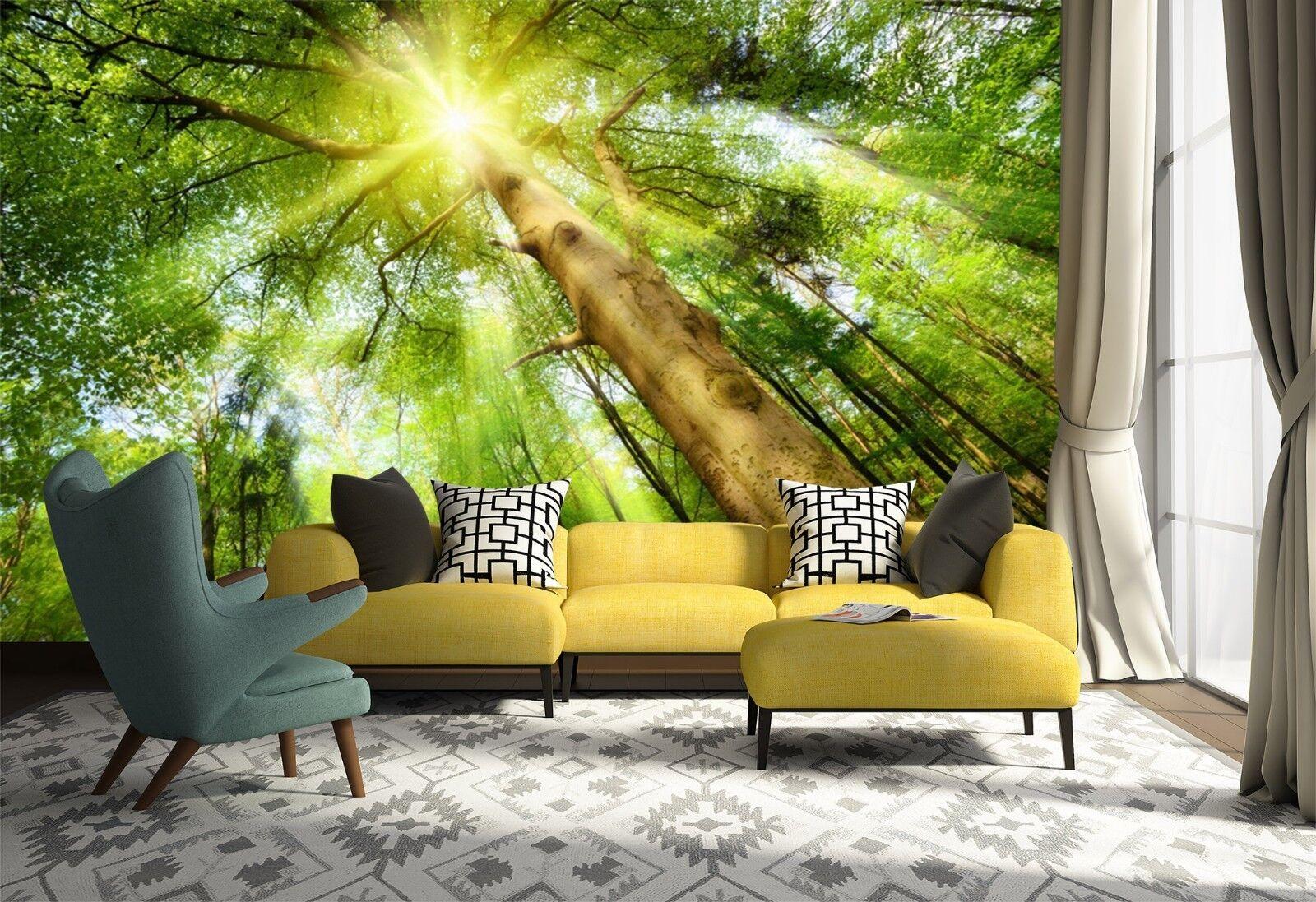 3D Tree Sunlight 7084 Wallpaper Mural Wall Print Wall Wallpaper Murals US Lemon