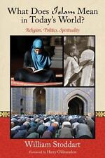 What Does Islam Mean in Today's World?: Religion, Politics, Spirituality (Perenn