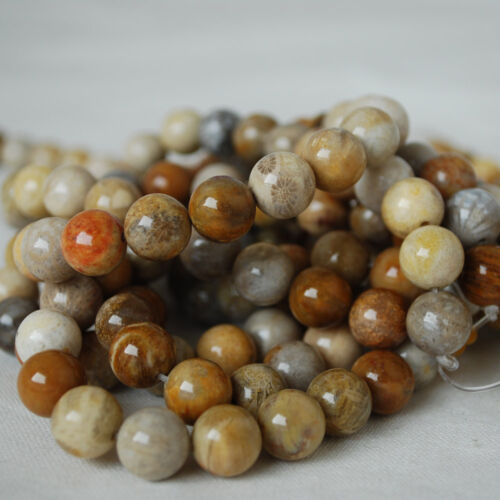 gold Grade A Natural Fossilized Coral Gemstone Round Beads 4mm 6mm 8mm 10mm