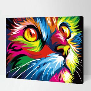 Details Zu Malen Nach Zahlen Katze In Regenbogenfarben 40x50 Cm Auf Echter Leinwand