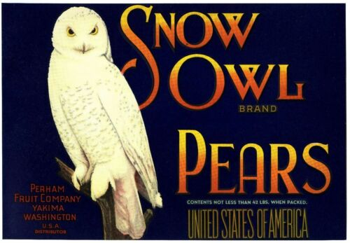 SNOW OWL~BIRD~ORIGINAL 1920s AUTHENTIC YAKIMA WASHINGTON PEAR FRUIT CRATE LABEL