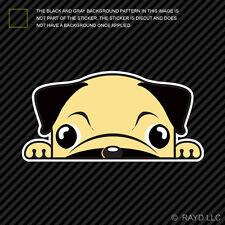 Pug Sticker Die Cut Decal Self Adhesive Vinyl Mini Dutch Mastiff