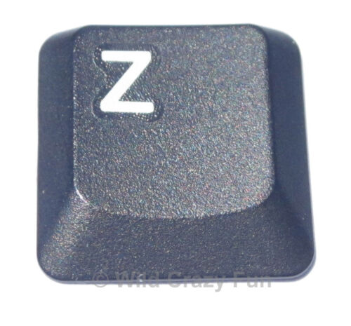 IBM Laptop Keyboard KEY Keys Thinkpad X40 X41 Tablet