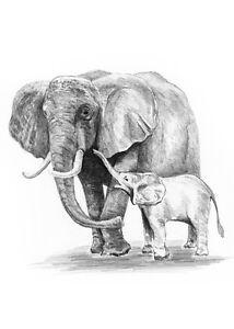 Sketching Skizzieren Malen Mit Bleistift Elefant Mit Baby