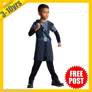 RUBIES-Boys-Costume-Fancy-Dress-Licensed-Lord-of-the-Rings-Thorin-Deluxe-883022