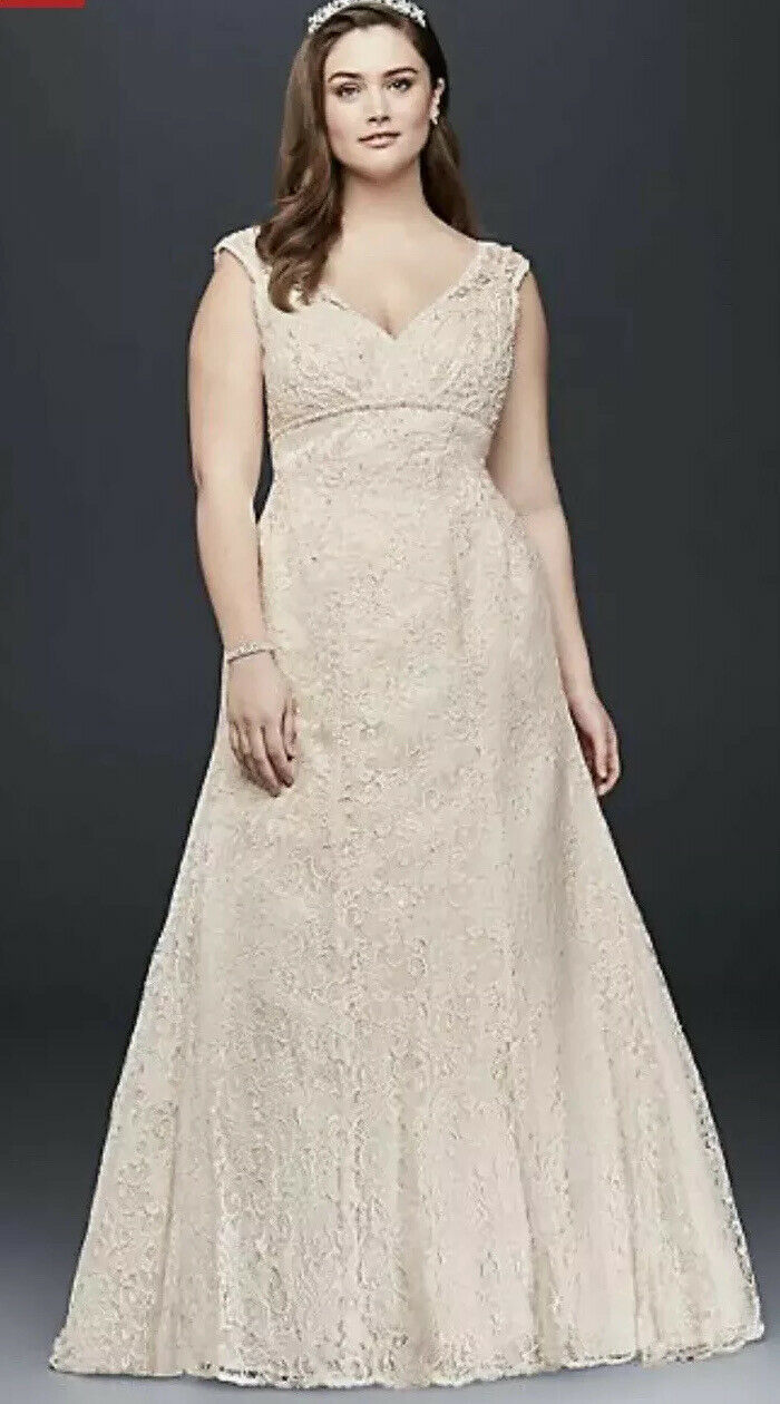 David's Bridal Sz 16w Beaded Lace V-Neck Cap Sleeve Wedding Dress,  Ivory/champa