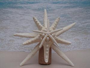 Details About Sale Starfish Tree Topper Tropical Beach Christmas Coastal Nautical Xmas Beachy