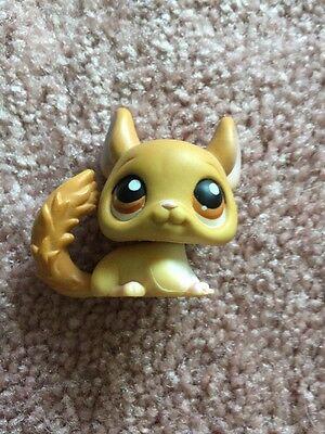 2007 Littlest Pet Shop Brown Yellow Tan Chinchilla #340 Brown Eyes Hasbro LPS