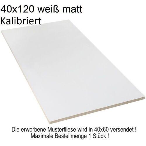 28,90€//m² XXL Wandfliesen 40x120 cm weiß matt kalibriert 1.Wahl Steingut