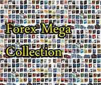 Forex 100% bonus 1099