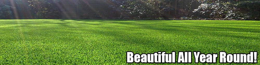 artificialgrassdirect