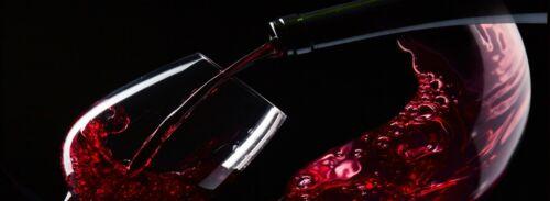 Küchenrückwand Sonderaktion Weinglas SP71 Spritzschutz Küche Bad Acrylglas